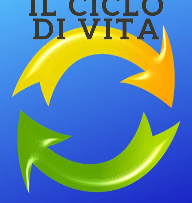 La Life Cycle Perspective, Il Ciclo di Vita